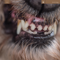 Top 10 Albums of the Year 2017: Blanck Mass - World Eater