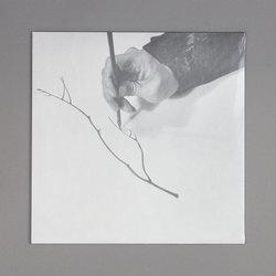 (f)lute songs