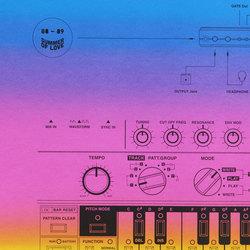 Roland TB-303: Summer of Love 88-89 Edition Multicolour Print