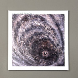 The Spiral Arm