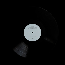 EVERYONE AFRAID TO BE FORGOTTEN LP