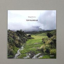 Topinambur EP