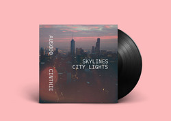 Skylines - City Lights. Vinyl - 1×LP