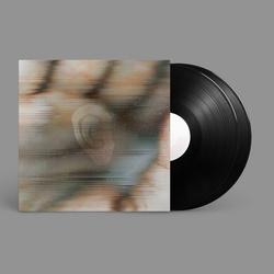 Chapterhouse Retranslated by Global Communication - Blood Music: Pentamerous Metamorphosis. Vinyl - 2×LP