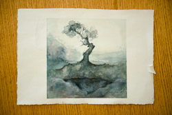 signed watercolour