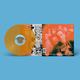 The Mutt's Nuts. Vinyl - 1×LP, Limited Coloured - Orange LP