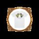 Don Broco Baby Dino Fighting T-Shirt