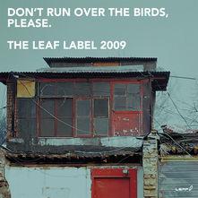Don't Run Over The Birds, Please.
