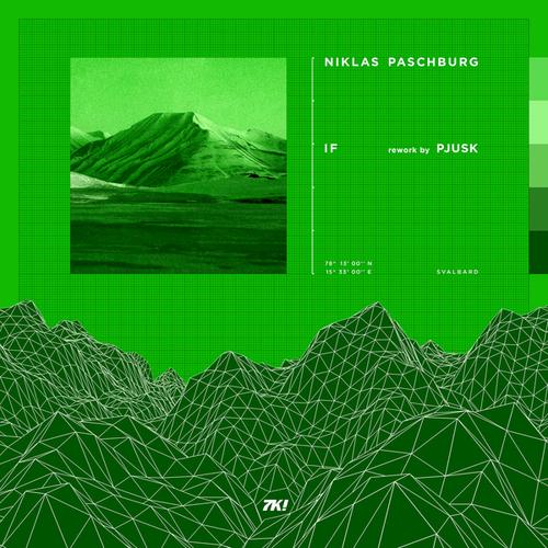 Niklas Paschburg - If (Pjusk Remix)