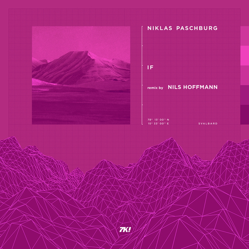 Niklas Paschburg - If (Nils Hoffmann Remix)