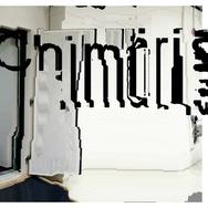 Chimärisation