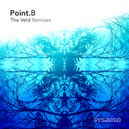 The Veld Remixes