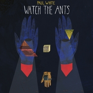 Watch The Ants
