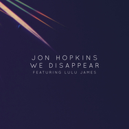 We Disappear (feat. Lulu James)