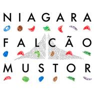 Mustor & Falcão