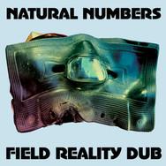 Field Reality Dub
