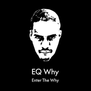 Enter the Why