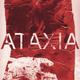 ATAXIA_B2
