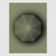 AUDINT—Unsound:Undead