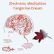 Electronic Meditation