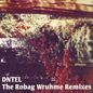 The Robag Wruhme Remixes
