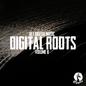 Get Digital Presents Digital Roots, Volume II