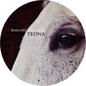 Bosconi Stallions - Teona