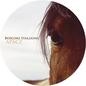 Bosconi Stallions - Apacz