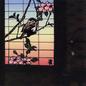 Suzume: 13 Japanese Birds Pt. 1