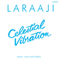 Soul Jazz Records Presents Laraaji: Celestial Vibration