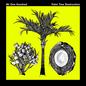 Palm Tree Destruction